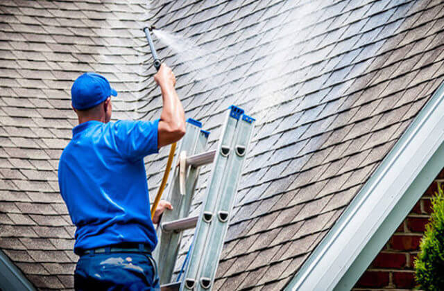 norfolk roof cleaning